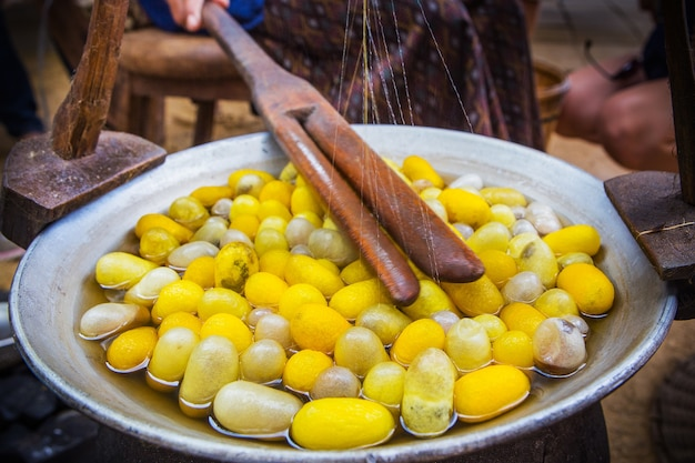 Желтая оболочка коконов шелкопряда через шелковый путь, процесс пивоварения Premium Фотографии