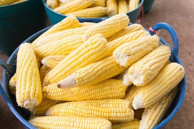 農民市場での新鮮なスイートコーンの穂軸 Premium写真