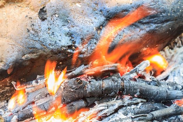 オレンジ色の炎と薪で焚き火 Premium写真