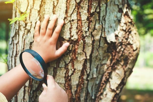 生徒は虫眼鏡を持って勉強し、自然を学びます。 Premium写真