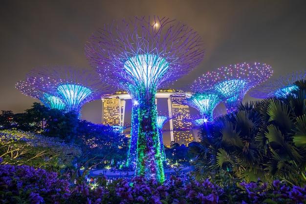 シンガポール旅行の概念 Premium写真
