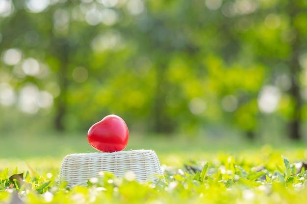 Красная форма сердца на зеленом естественном фоне в саду на открытом воздухе Premium Фотографии