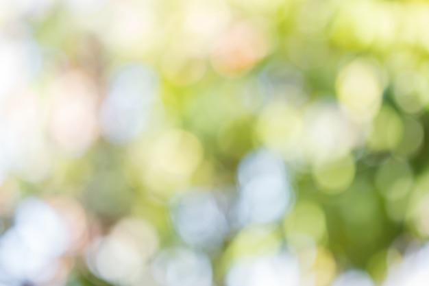 自然の緑は太陽光のフレアホワイトバックグラウンドのボケ味を残します。 Premium写真