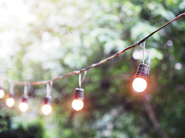 庭にぶら下がっている電球とワイヤー。 Premium写真
