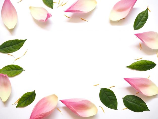 白い背景の上の緑の葉と黄色の花粉と蓮の花びらのトップビュー Premium写真