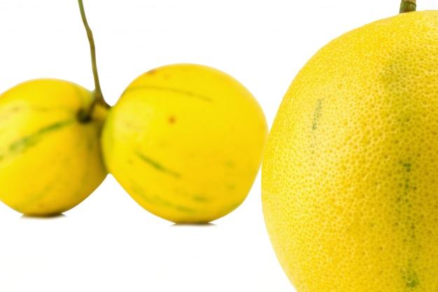 Бергамот апельсины цвет желтый на белом фоне Premium Фотографии