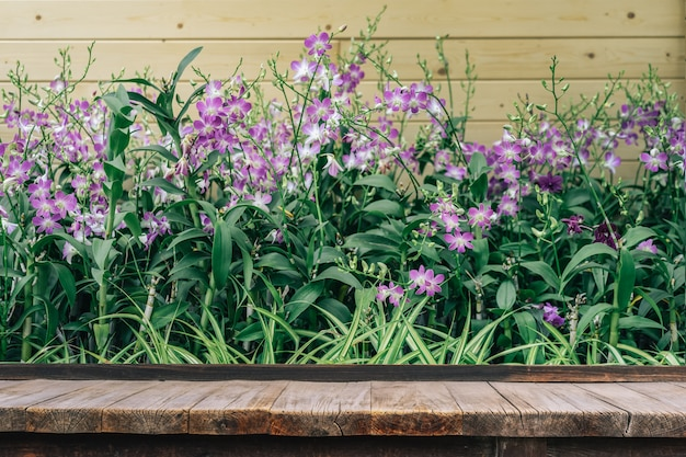冬または春の日に蘭の庭で蘭の花の前に木製のテーブル Premium写真