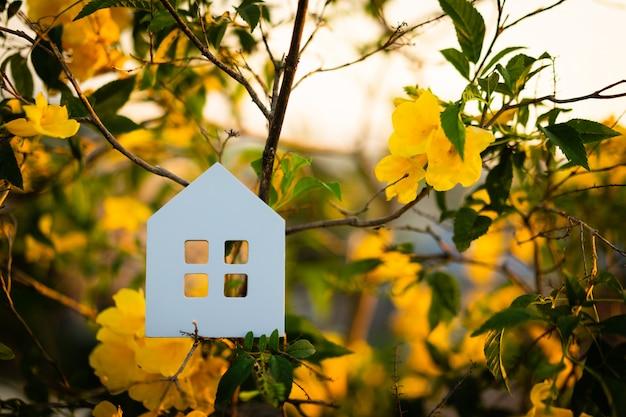 木、建設、エコロジー、ローン、住宅ローン、財産または家のシンボルの家モデル。 Premium写真