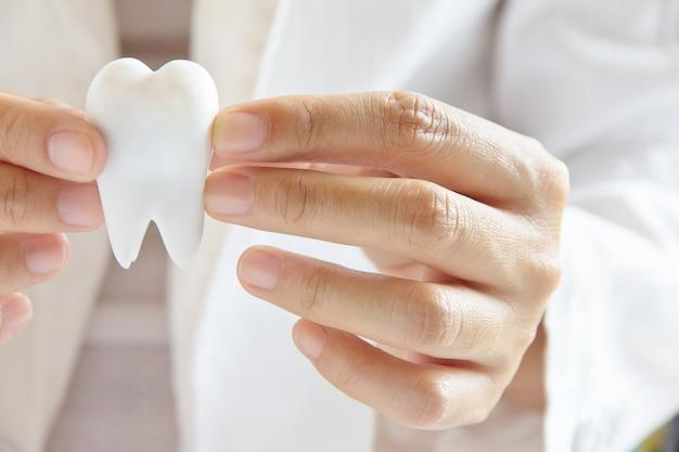 歯のコンセプト Premium写真