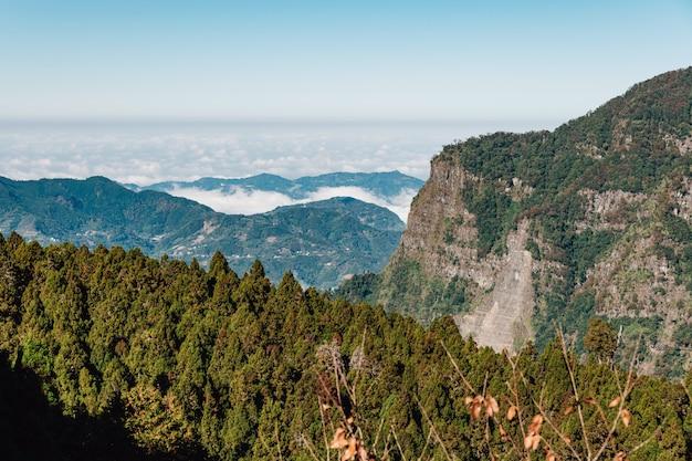 台北の阿里山の手前の雲と霧の低い雲と霧のある阿里山。 Premium写真