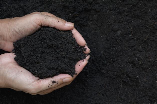 植え付けの手の中に土を保持する男性の手。 Premium写真