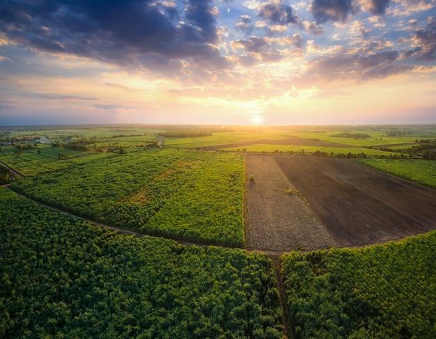 無人機からの航空写真夕焼け空と自然の風景の背景とサトウキビのフィールド。 Premium写真