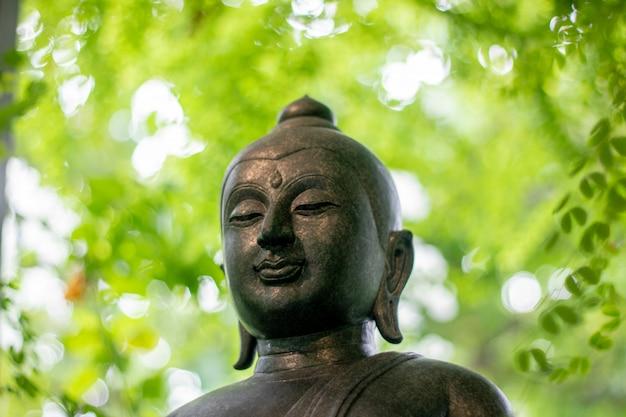 Образ будды зеленый естественный фон Premium Фотографии