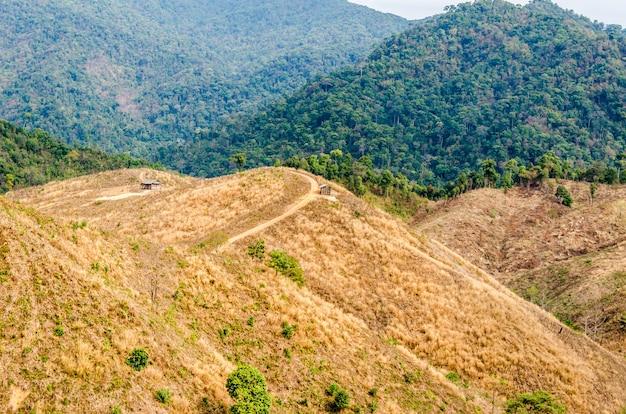 タイの山の劣化林 Premium写真