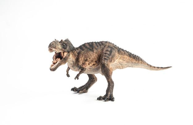 ゴルゴサウルス恐竜 Premium写真