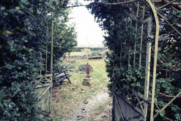 放棄された庭 無料写真