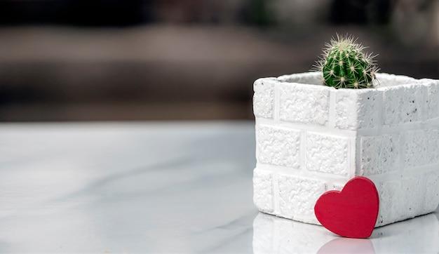 白い鍋と大理石のトップテーブル、コピー領域に赤いハートのサボテン。 Premium写真