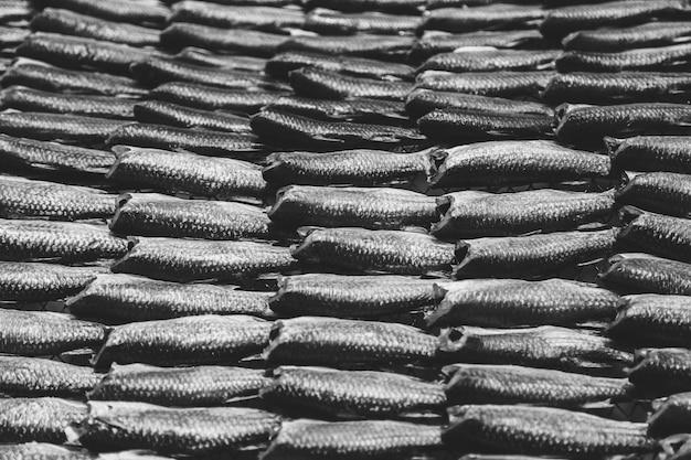 Сушеная рыба, консервы Premium Фотографии
