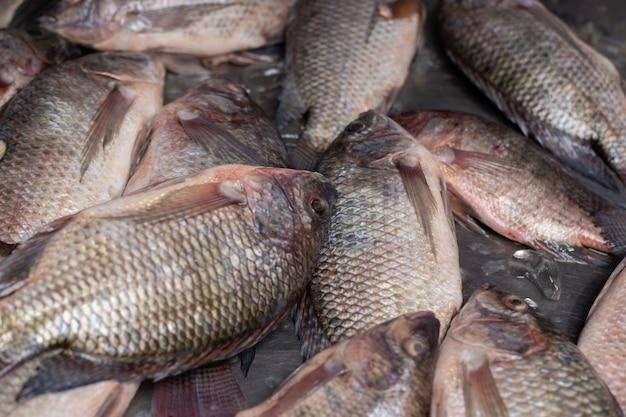 市場で売られている氷の上に置かれた新鮮な魚。 Premium写真