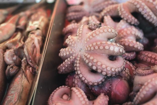 魚市場で販売するタコ 無料写真