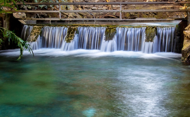 熱帯林で川の古いコンクリート洪水吐のクローズアップ。 Premium写真