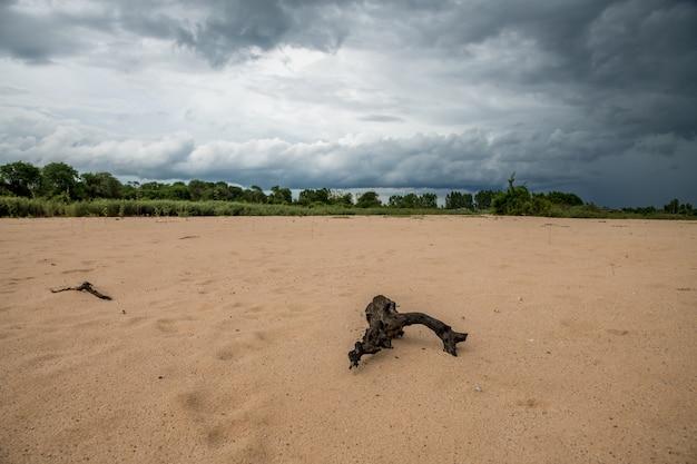 タイのスリン地方のムーン川の砂丘上の雷雨からの暗い雲と降水 Premium写真