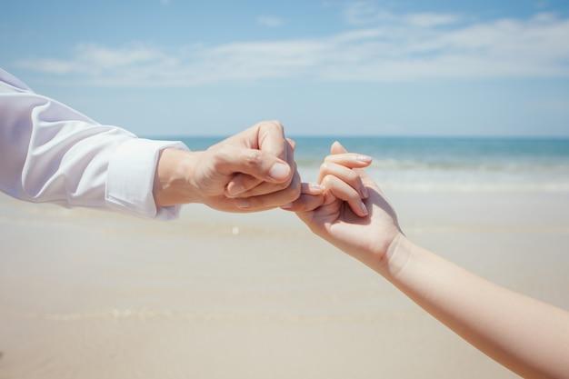Любители путешествий рука об руку друг с другом и мизинец клянутся Premium Фотографии