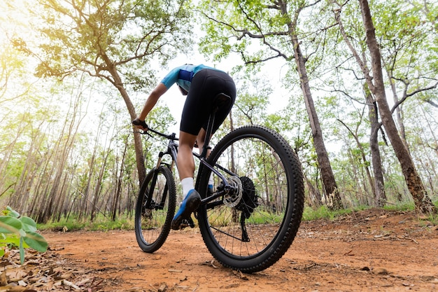 Обучение велосипедистов в лесу Premium Фотографии