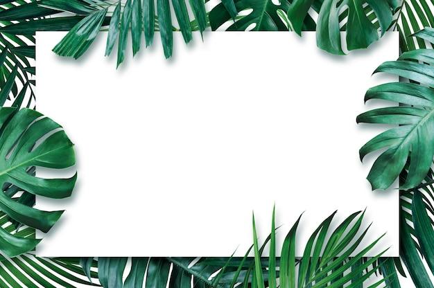 白い背景の上の空白の紙と夏の熱帯の葉 Premium写真