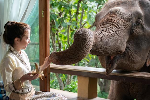 美しいアジアの女性は木製のバルコニーに座って象を養います。 Premium写真