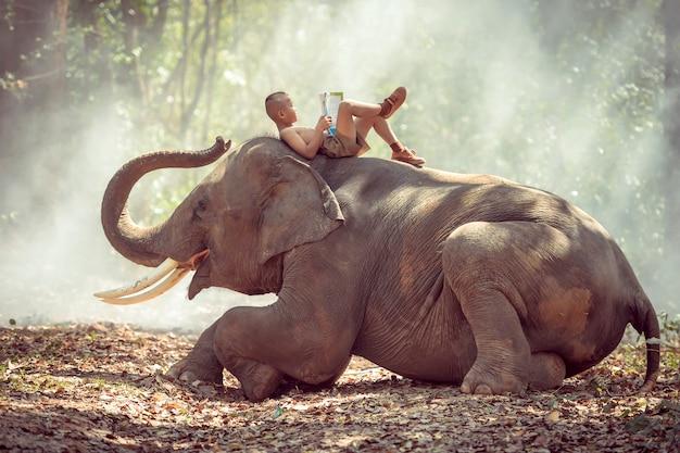 タイの田舎の小さな男の子が象について読んでいた。 Premium写真