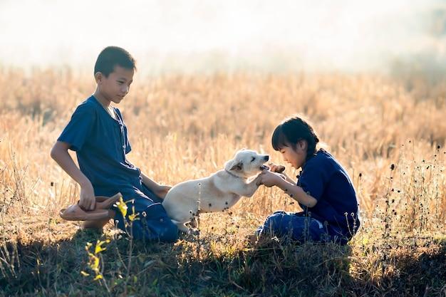 Мальчики и девочки, дети тайского фермера играют с собаками на рисовых полях. Premium Фотографии