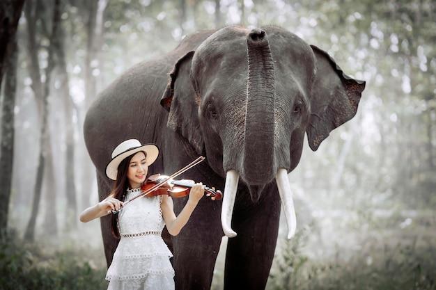美しい少女は、象が聞くためにバイオリンを弾いています。 Premium写真