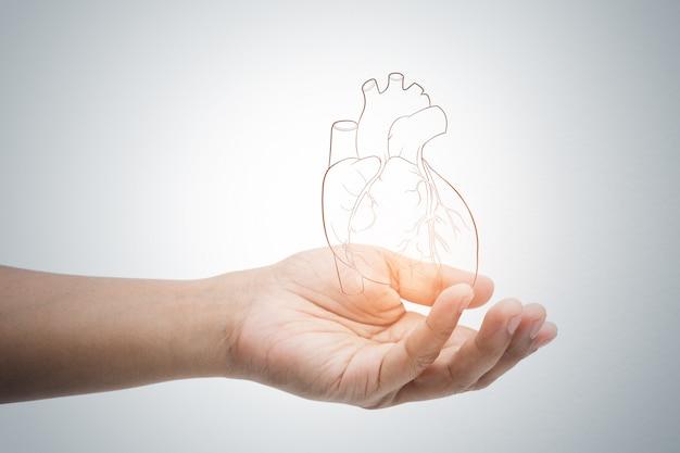 Мужчина держит сердце иллюстрации на серую стену Premium Фотографии