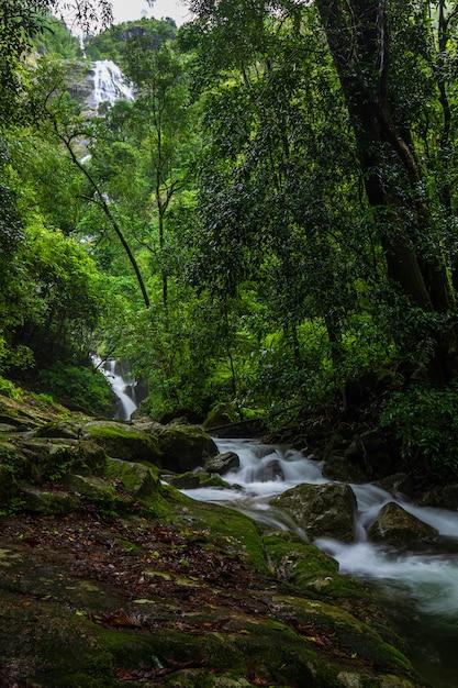 Водопад пи-ту-гро, красивый водопад в провинции так, тайланд. Premium Фотографии