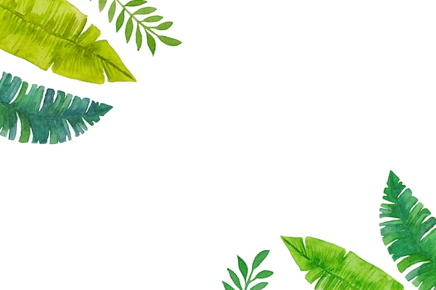 水彩画、手描きの緑の熱帯は白い背景の上のフレームを残します。 Premium写真