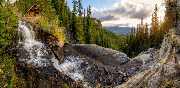 Декорации чайного домика на водопаде в сосновом лесу в национальном парке банф Premium Фотографии