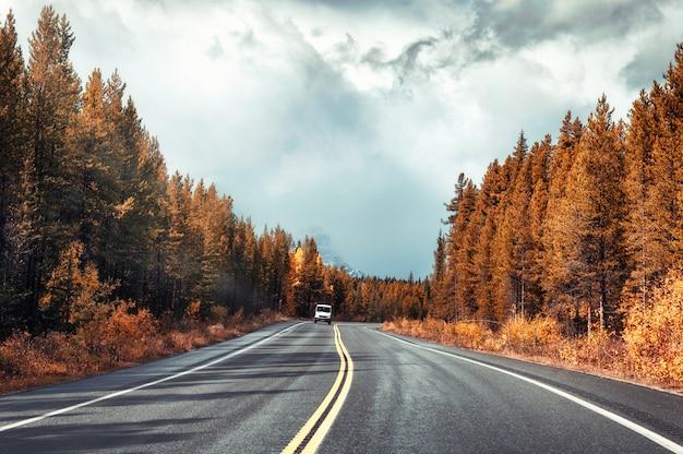 カラフルな秋の森と曇り空のバンフ国立公園のアスファルト道路 Premium写真