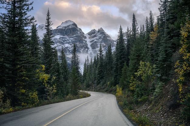 バンフ国立公園のモレーン湖の松林のロッキー山脈と高速道路 Premium写真