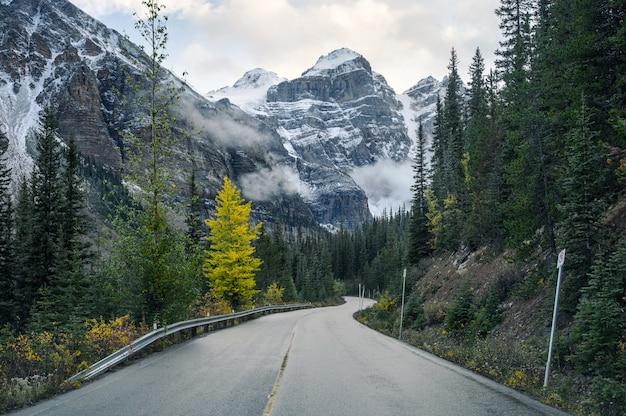 モレーン湖で秋の森のロッキー山脈で高速道路を走行 Premium写真