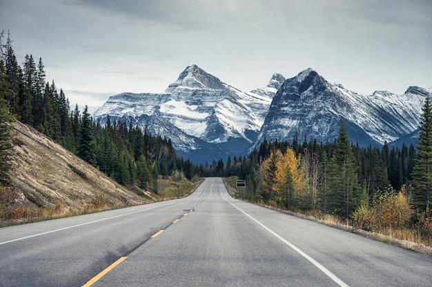 秋の森のロッキー山脈の高速道路 Premium写真