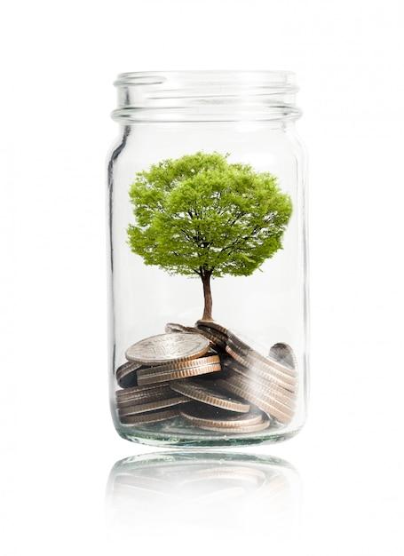 瓶の中に成長しているコインと木 Premium写真