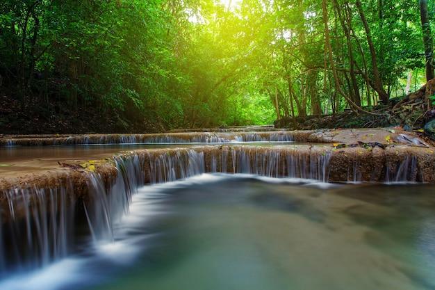 深い森、カンチャナブリ、タイの木々と滝 Premium写真