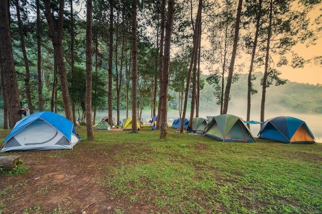 Приключенческий поход и кемпинг по утрам с легким туманом в панг-унг, мэй хонг сон, таиланд Premium Фотографии