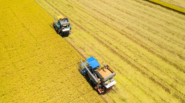 上から田んぼで作業ハーベスタマシンの航空写真 Premium写真