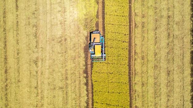上から田んぼで作業ハーベスタマシンの空中平面図 Premium写真