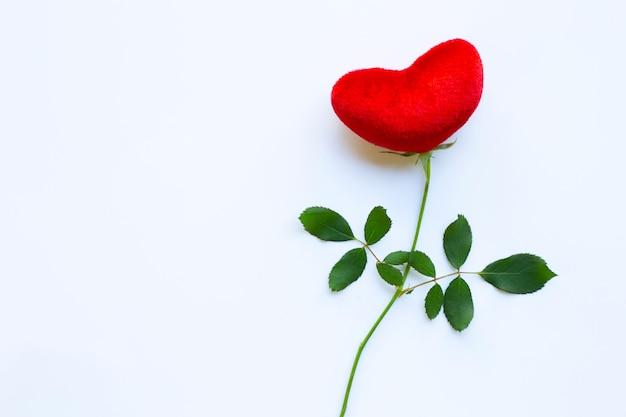 白、コピースペースにバラの枝と赤いハート。バレンタインデーのための概念の背景 Premium写真
