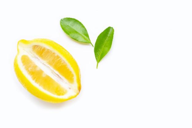 白い背景で隔離のレモン。 Premium写真