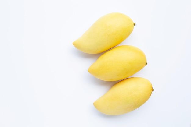 マンゴー、ジューシーで甘いトロピカルフルーツのトップビュー。 Premium写真