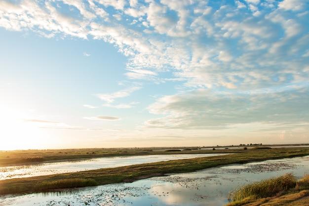 タイの湿地の美しい夕日。 Premium写真